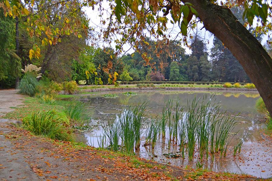 conchaytoro_jardins